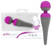 Preview: PalmPower Massager