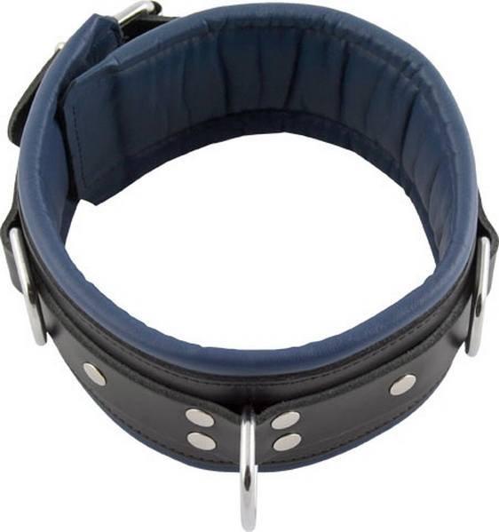 Halsfessel mit blauer Polsterung