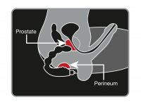 Preview: Prostata-Vibrator mit Lustkugeln Skizze