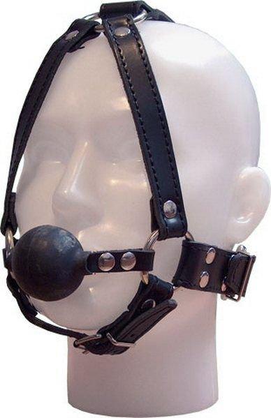 Ball gag face harness